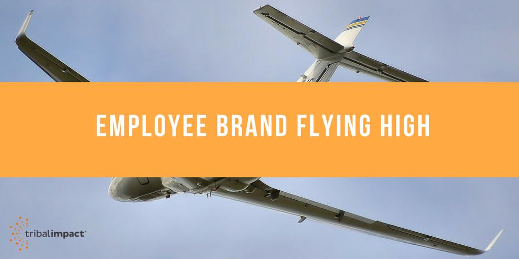 Employee Brand Flying High - Tribal Impact