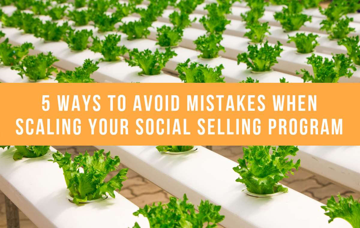 5 Ways To Avoid Mistakes When Scaling Your Social Selling Program