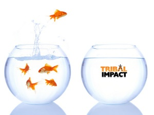 Goodbye SAP. Hello Tribal Impact.