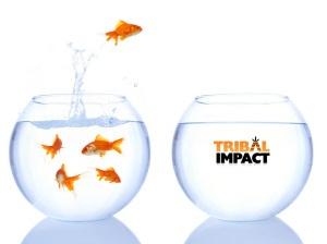 Goodbye SAP. Hello Tribal Impact. Sarah Goodall