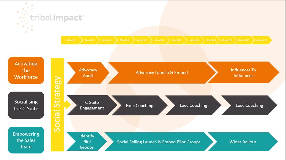 social business model